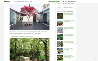 Houzz featured our Double Gable Eichler Remodel