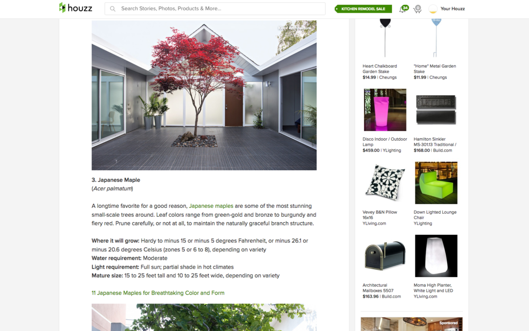 Houzz features our Double Gable Eichler Remodel