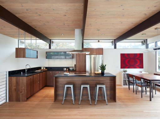Mill Valley Mid-Century Modern Remodel